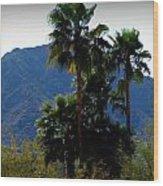 Camelback Beyond The Palms Wood Print