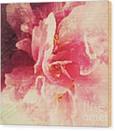 Camellia Flower With Music Wood Print