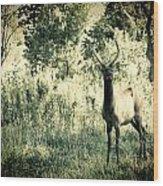 Camouflage Elk Wood Print