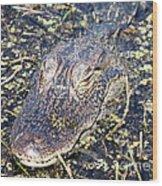 Camouflaged Gator Wood Print