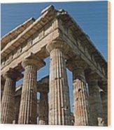 Campania Ruins Wood Print