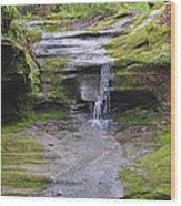 Camusfearna Gorge 1 Wood Print