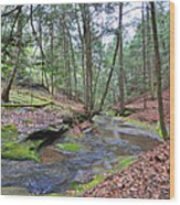 Camusfearna Gorge 4 Wood Print
