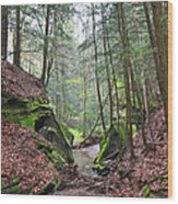 Camusfearna Gorge 5 Wood Print