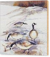Canada Geese In Stubble Field Wood Print