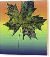 Canadian Maple Leaf Wood Print