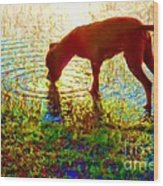 Canelo Drinking Water By The Lake Wood Print
