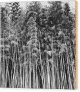 Canes At Canebrake Wood Print