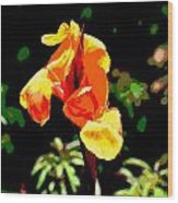 Canna In Summer Wood Print