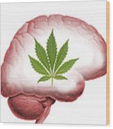 Cannabis Use, Artwork Wood Print by Victor De Schwanberg