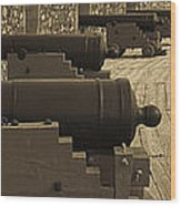 Cannons At Louisberg Fortress Wood Print
