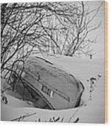 Canoe Hibernation Wood Print