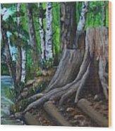 Canoe Landing Lake 18 Wood Print