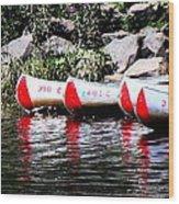 Canoe Rentals On The St Croix Wood Print