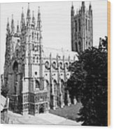 Canterbury Cathedral - England - C 1902 Wood Print