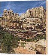 Canyon Castle Wood Print