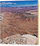 Canyon In Canyonlands Wood Print