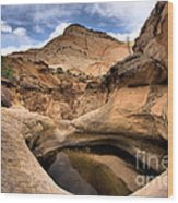 Canyon Pool Wood Print