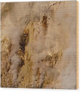 Canyon Steam Vents In Yellowstone National Park Wood Print