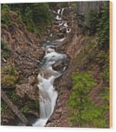 Canyon Stream Wood Print by Mike Reid