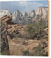 Canyon Trail Overlook Wood Print