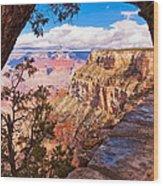 Canyon View IIi Wood Print