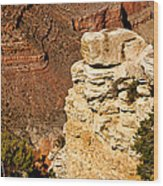 Canyon View V Wood Print