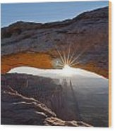 Canyonalnds National Park Wood Print