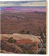 Canyonland Overlook Wood Print