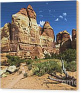 Canyonlands Chesler Park Wood Print