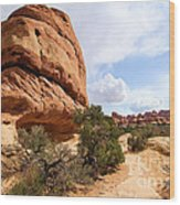 Canyonlands Needles Trail Wood Print