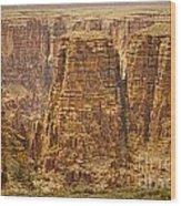 Canyons  Wood Print