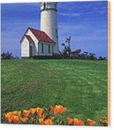 Cape Blanco Lighthouse Oregon Wood Print