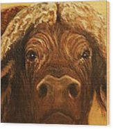Cape Buffalo Wood Print