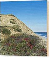 Cape Cod Dune Cliff Wood Print