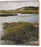 Cape Cod National Seashore Wood Print
