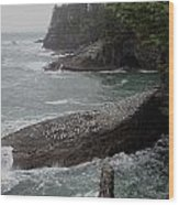 Cape Flattery Shoreline Wood Print
