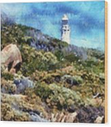 Cape Leeuwin Wood Print