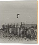 Cape May Morning Wood Print by Bill Cannon