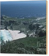 Cape Of Good Hope - Africa Wood Print