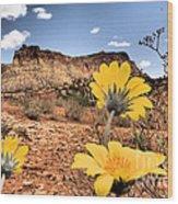 Capitol Flowers Wood Print
