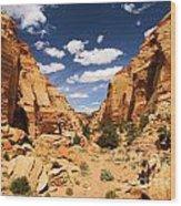 Capitol Reef Cohab Canyon Wood Print
