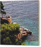 Capri  6 Wood Print
