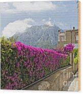 Capri Alleyway Wood Print