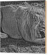 Captain Crunch Monochrome Wood Print