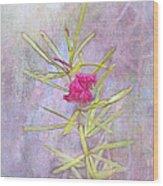 Captured Blossom Wood Print