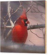 Cardinal - Unafraid Wood Print