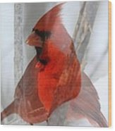 Cardinal Collage Wood Print