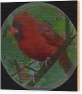 Cardinal Ring Wood Print