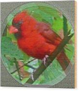 Cardinal Rings Wood Print